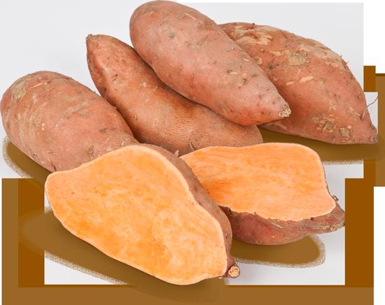 Spanische Süßkartoffel