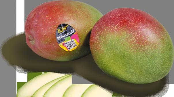 """Genussreife Mango """"Kent"""""""
