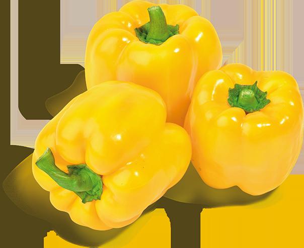 Spanische gelbe Paprika