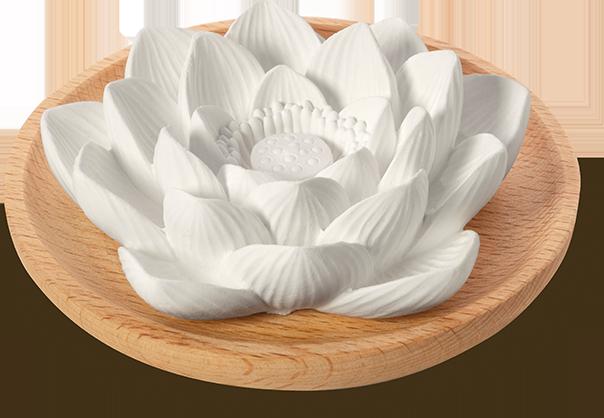 Duftstein Lotusblüte